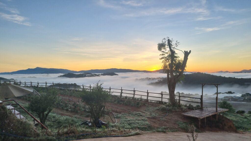 Săn Mây Đà Lạt ngắm bình minh 2021 xuất sắc với phong cảnh tuyệt đẹp tại Đồi Mây Đà Lạt